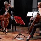 Une Histoire... la viole et le violoncelle - Sept.2014 © Clément Ségissement